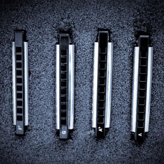 steve-lockwood-harmonica-lessons